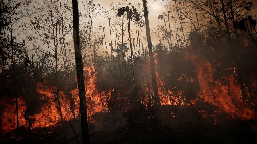 Queimadas em Porto Velho (RO) - Ueslei Marcelino/Reuters
