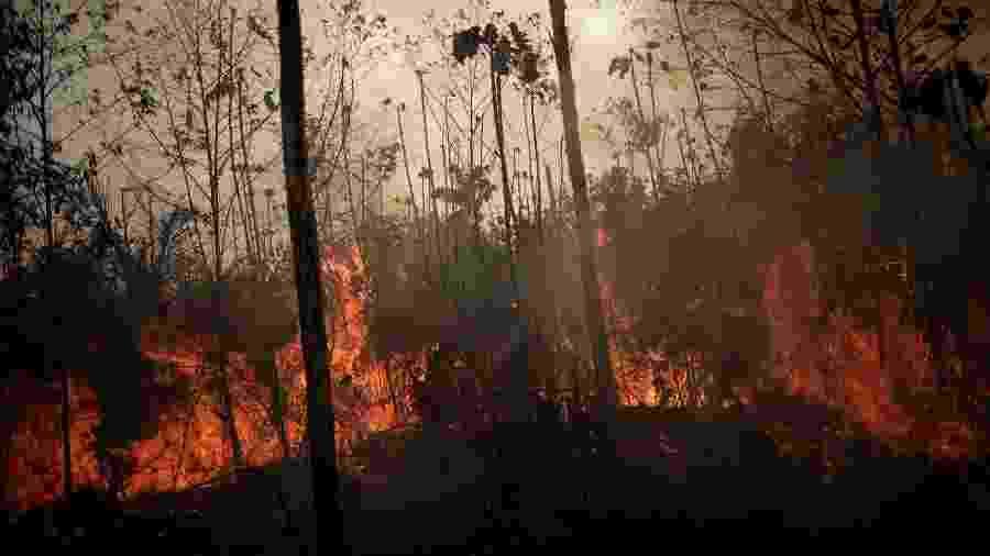 Região amazônica não possui a mesma capacidade de lidar com o fogo do que o Cerrado - Ueslei Marcelino/Reuters