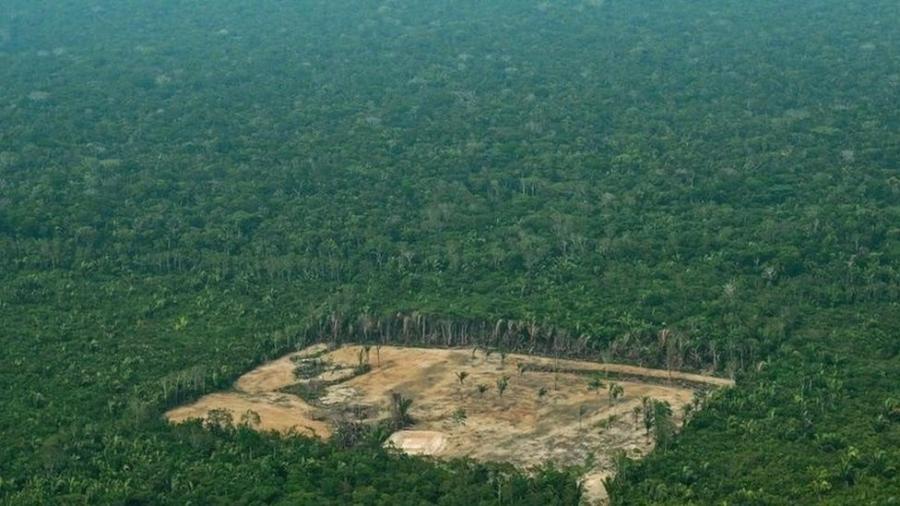 Ambientalistas dizem que aprovação da proposta de Irajá alimentaria a grilagem de terras, uma das principais causas para o desmatamento na Amazônia - AFP
