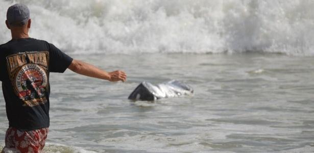 Pacotes com maconha foram encontrados em praias da Flórida, nos EUA  - Polícia do Condado de Flagler