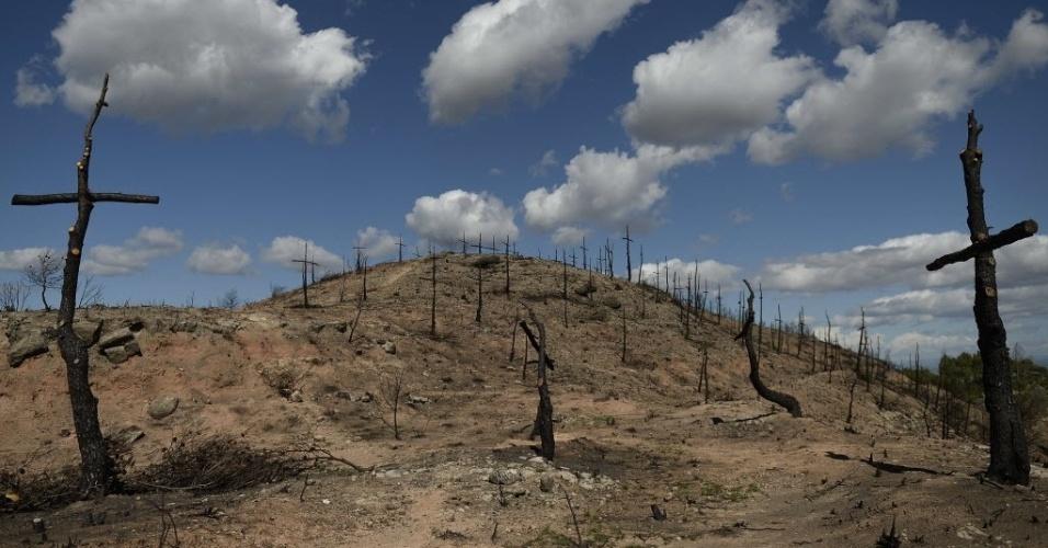 6.ou.2015- Uma área foi transformada em um cemitério de árvores com 200 cruzes feitas pelos bombeiros após um incêndio florestal em Sant Salvador de Guardiola, na Espanha. O incêndio começou no dia 27 de julho, ameaçando mil hectares do terreno florestal e forçando 800 pessoas a saírem da região