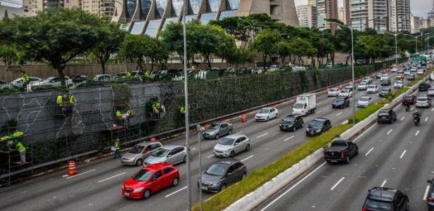 Trabalhadores da Prefeitura finalizam parede verde na Avenida 23 de maio