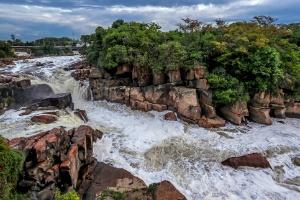Mancha de poluição do Tietê diminui, e rio volta a ter patos, garças e peixes (Foto: Gabriela Biló/Estadão Conteúdo)