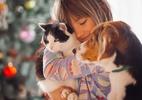 Cachorro é mais apegado a gente que gato? Este estudo vai mudar sua ideia (Foto: Freepik)