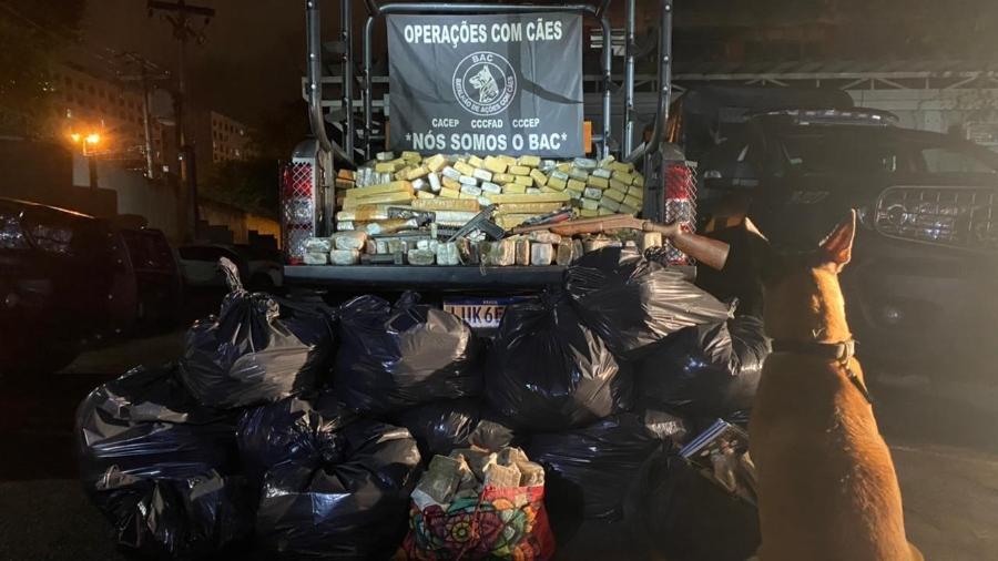 Cadela ajuda a encontrar tonelada de drogas no RJ - Divulgação/Polícia Militar do Rio de Janeiro