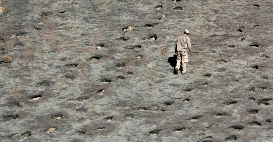 Pesquisador afirma que rastros deixados por dinossauros na Bolívia não existem em outros lugares do mundo