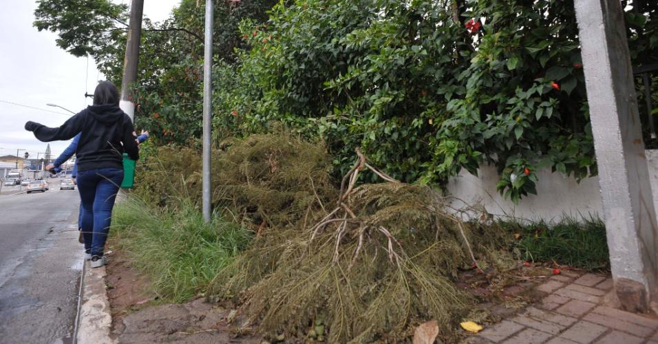 26.abr.2017 - Mato e restos de podas de árvores inviabilizam pedestres usarem a calçada ao lado do parque Raul Seixas, na zona leste de São Paulo