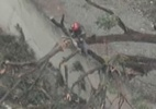 Bombeiro sofre acidente com queda de muro enquanto podava árvore em SP - Band/Reprodução