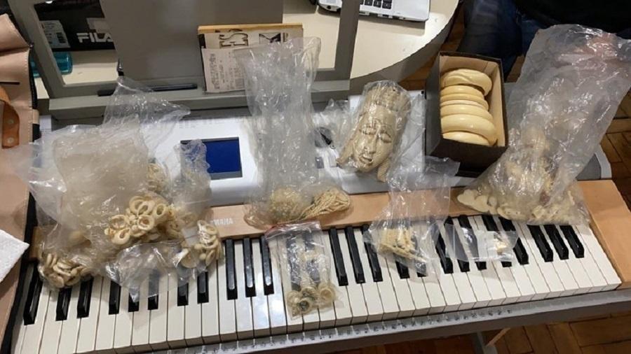 As investigações da PF conseguiram apontar e identificar um provável fornecedor das peças de marfim de elefantes - Divulgação/Polícia Federal