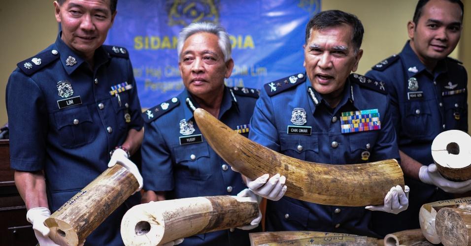 2.mar.2016 - Funcionários da alfândega da Malásia exibem presas de elefantes confiscadas em aeroportos, nos arredores de Kuala Lumpur. Segundo as autoridades, foram apreendidos 159 quilos de marfim de passageiros. A Malásia é usada como trânsito na Ásia no mercado ilegal de presas