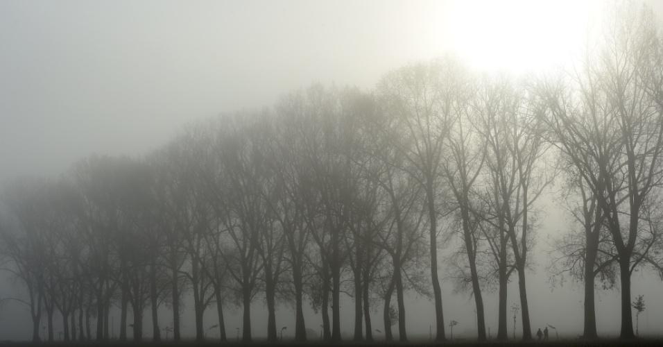 28.out.2016 - Casal caminha entre árvores durante nevoeiro do outono com temperaturas de cinco graus, perto da aldeia Groebenzell, na Alemanha