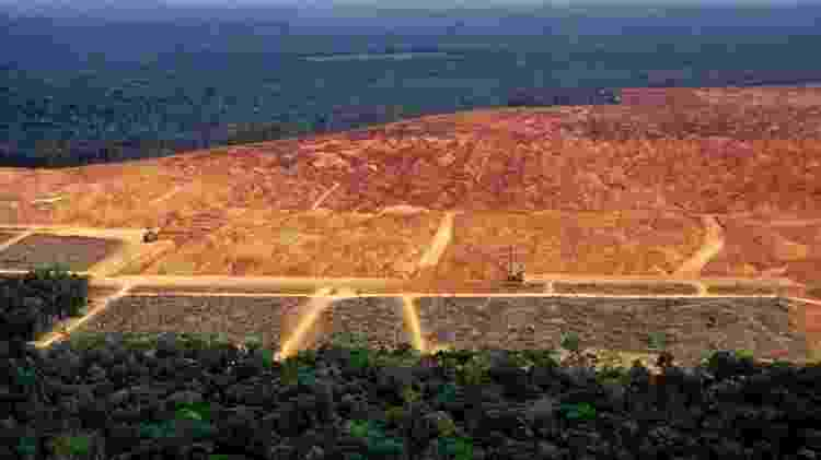 A destruição da vegetação nativa e as mudanças climáticas vão prejudicar diretamente o agronegócio no Brasil, segundo especialistas - Getty Images