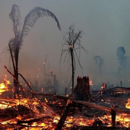 """Como a """"MP da grilagem"""" pode mudar o mapa de regiões da Amazônia - Reuters"""