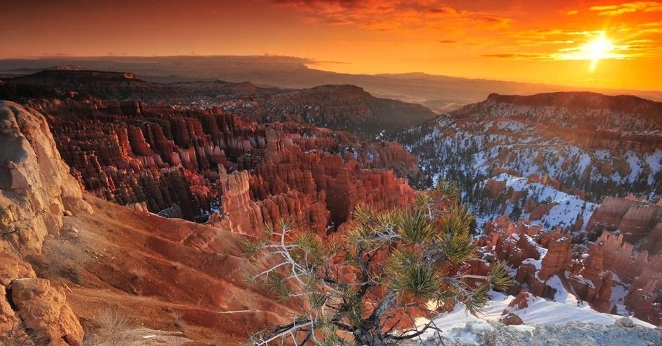 22.fev.2016 - Sol se põe no Parque Nacional Bryce Canyon, nos EUA. No Anfiteatro ficam as estruturas mais impressionantes do parque, como os hoodoos, formações geológicas em forma de colunas