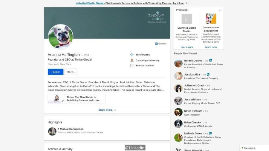 Extensão de navegador transforma fotos de usuários do LinkedIn em imagens aleatórias de cachorros - REPRODUÇÃO / BBC