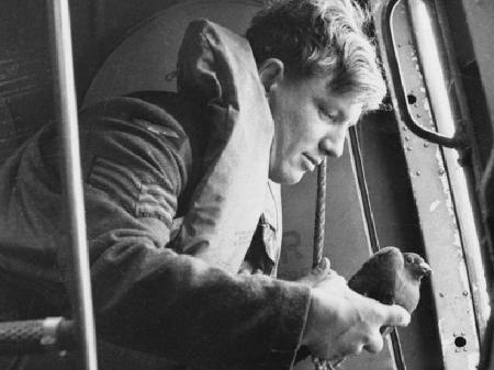 Pombo-correio se preparando para ser lançado de avião em 1941 - Getty