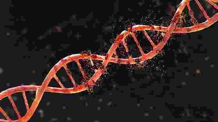 Com apenas pequenos fragmentos de ossos, os cientistas conseguiram sequenciar todo o genoma de um denisovano - Getty Images - Getty Images