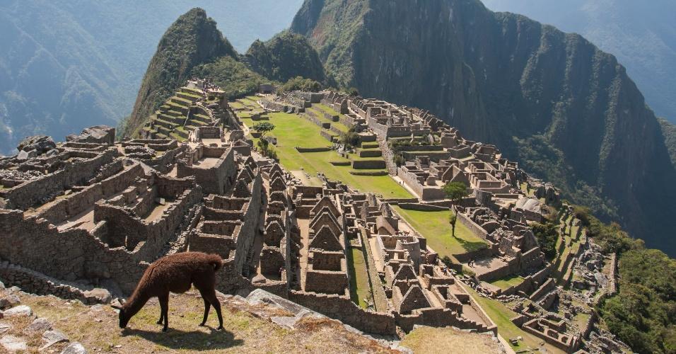 30.mar.2016 - Uma lhama pasta na antiga cidade Inca de Machu Picchu, no Peru. Elas são encontradas nos Andes, onde foram usadas como animais de carga por séculos