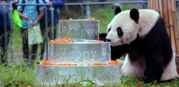 O panda Pan Pan comemorou 30 anos em 21 de setembro de 2015