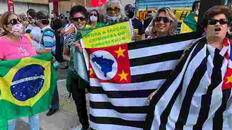 """Lourdes Dudus (com a bandeira do Brasil) é a favor da flexibilização da quarentena para salões de beleza: """"Olha o meu cabelo que mal cortado! Tô horrorosa"""" - Paulo Sampaio/UOL - Paulo Sampaio/UOL"""