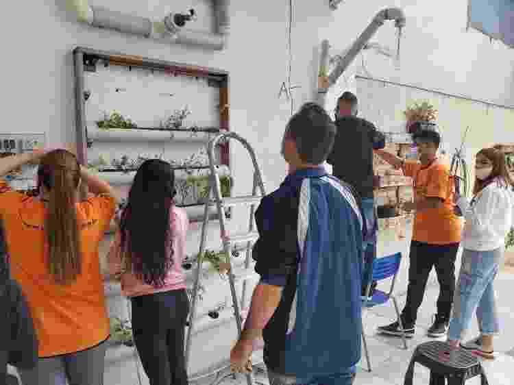 Jovens elaboram sistema automatizado de hortas verticais - Fábio Miranda - Fábio Miranda
