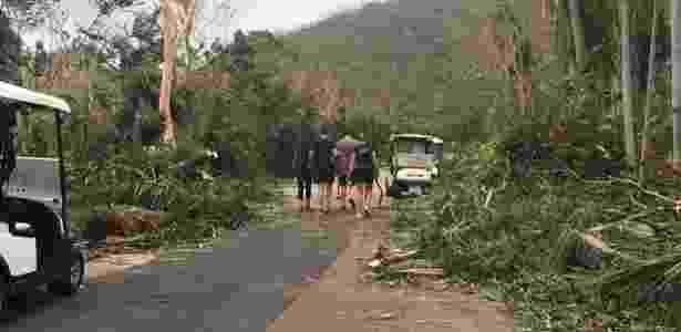 3329.mar.2017 - Estrada bloqueada por árvores caídas após a passagem do ciclone Debbie na ilha Hamilton, na Austrália - AFP - AFP
