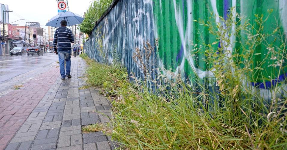 26.abr.2017 - Pedestre tem de desviar do mato na calçada do número 300 da avenida Alfredo Pujol, na zona norte de São Paulo