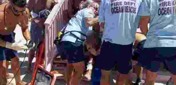 Tubarão em Miami - Divulgação/Miami-Dade Fire Rescue - Divulgação/Miami-Dade Fire Rescue