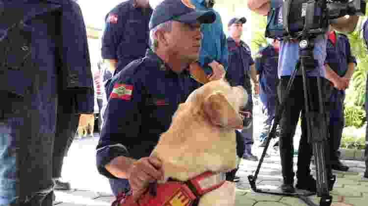 O labrador Ice, avô de Barney, foi à cerimônia de cremação - Divulgação/Bombeiros de Santa Catarina