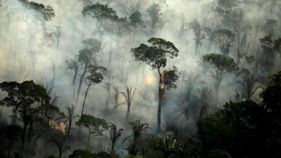 Brasil chega a encontro multilateral pressionado a reduzir desmatamento na Amazônia - Reuters