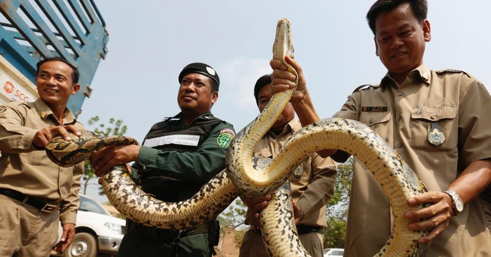 29.mar.2016 - Policiais do Camboja exibem uma cobra píton antes de entregar o animal apreendido em contrabando para membros da ONG WildAid, em Kandal, perto de Phnom Penh