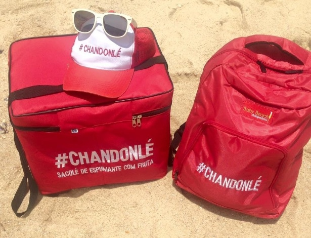 Bolsas térmicas utilizadas pelo empresário Ruan Nemeczymk, 27 anos, para vender Chandonlé, sacolé feito de Chandon com frutas