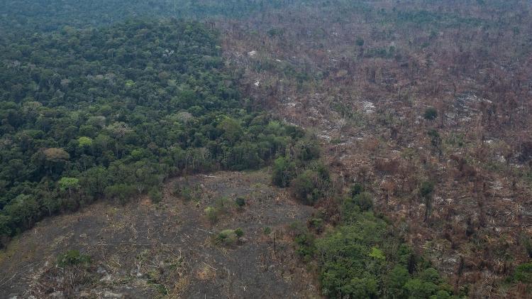 23.ago.2019 - Imagem aérea de queimadas na cidade de Altamira, no Pará - Victor Moriyama/Greenpeace