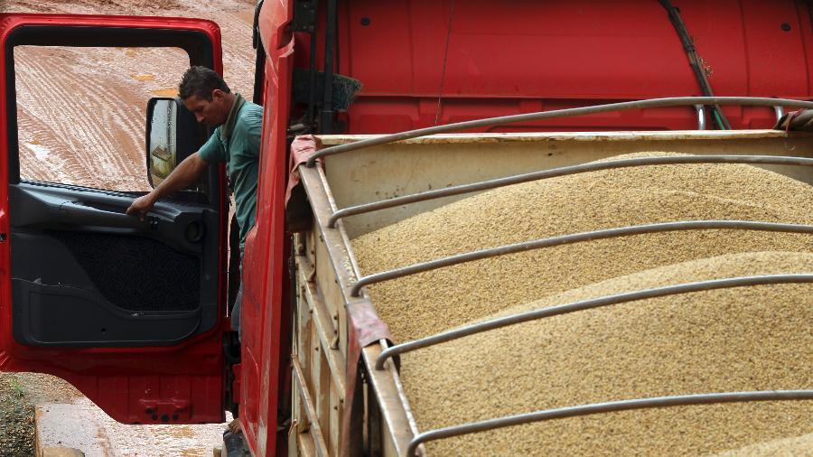 Caminhão carregado com soja em Primavera do Leste (MT) - Paulo Whitaker