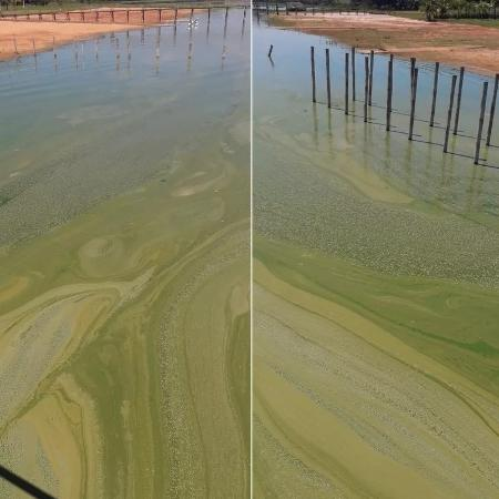 Água do Tietê ficam verde por invasão de algas - Reprodução/Facebook