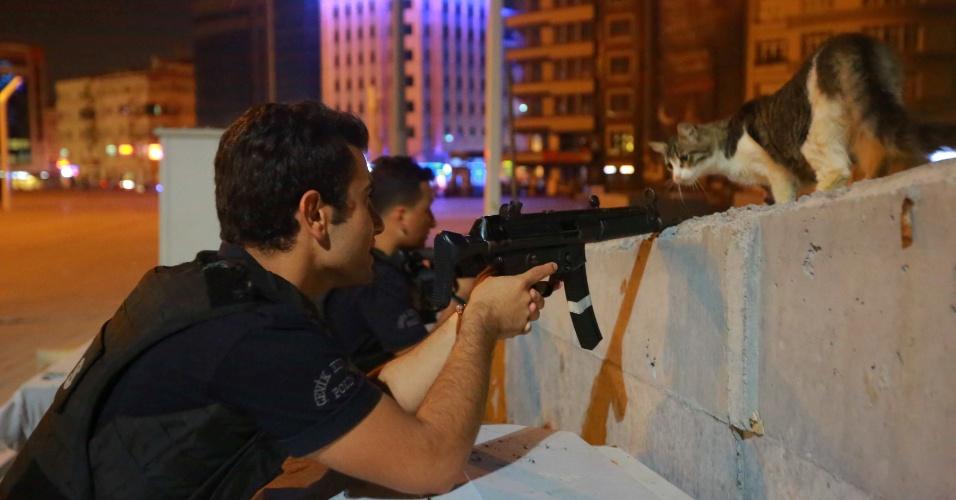 16.jul.2016 - Gato caminha sobre muro em que policiais se protegem durante a tentativa de golpe militar na cidade de Istambul, na Turquia