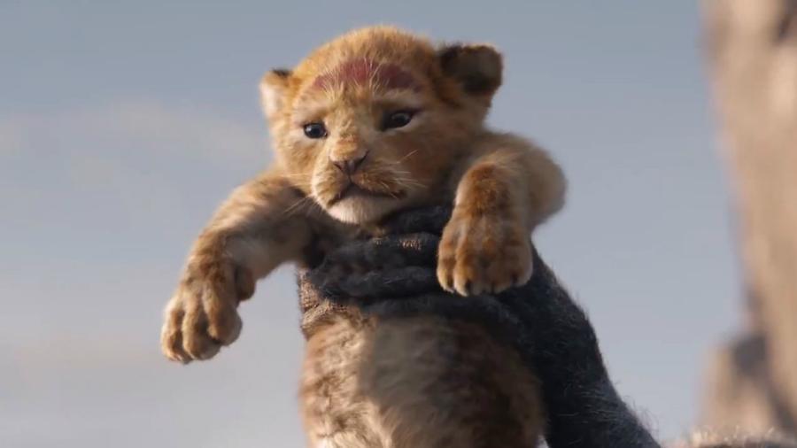 """Simba é apresentado em primeiro trailer de """"O Rei Leão"""" - Reprodução"""