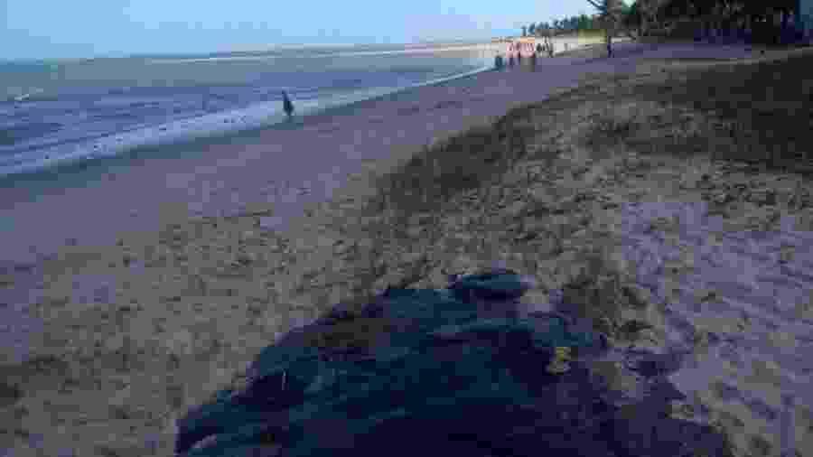 Mancha de óleo na areia da praia de Peroba, em São José da Coroa Grande (PE) - Aliny Gama/Arquivo Pessoal
