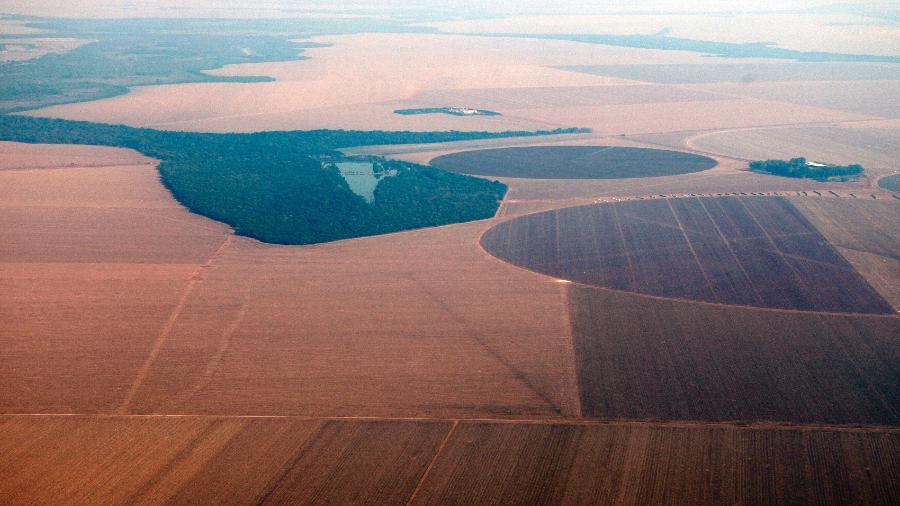 Vista aérea de plantação de soja no Mato Grosso - Paulo Whitaker