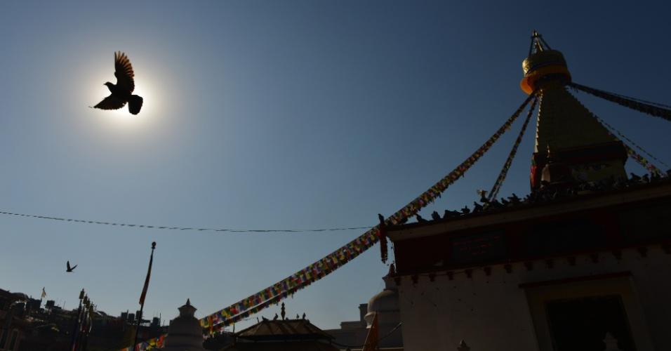 13.dez.2016 - Pombo voa em torno da Boudhanath Stupa nos arredores de Kathmandu, no Nepal