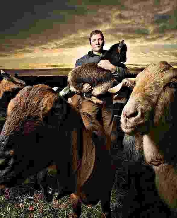 Rent-a-Ruminant aluga bodes e cabras para capinar terrenos - Divulgação