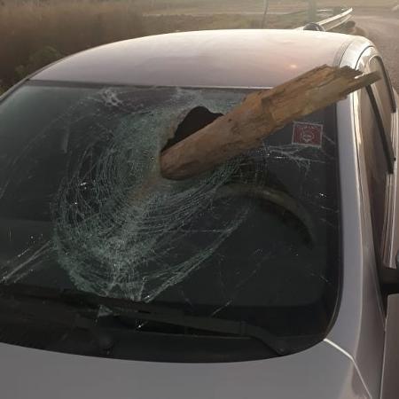 Carro de mulher atingido por estaca de madeira em Brasília  - Arquivo Pessoal