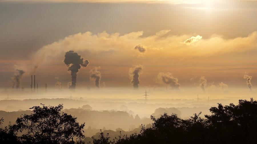 """""""Já esgotamos nossa cota de recursos biológicos para 2021"""", advertiu Susan Aitken - Pixabay"""