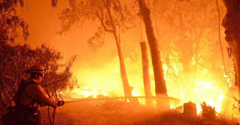 16.jun.2016 - Bombeiro tenta apagar parte de incêndio florestal que acontece em Santa Barbara, na Califórnia (EUA). Por causa do fogo, que começou por volta das 15h (horário local) de ontem, centenas de pessoas tiveram de ser evacuadas da região. O incêndio atinge uma área de cerca de 500 hectares