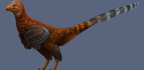 Nova espécie de dinossauro emplumado, batizado de Jianianhualong tengi, foi descoberta na China