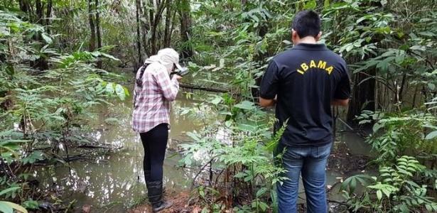 Águas apresentaram níveis elevados de alumínio e outras substâncias associadas aos rejeitos da Hydro Alunorte - Ibama