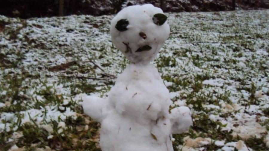 """Moradores do Rio Grande do Sul e de Santa Catarina montaram bonecos de neves bem... """"inovadores"""" - Reprodução/Twitter"""