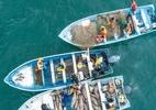 Pesca ilegal de peixe