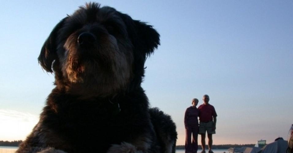 21.jul.2015 - Esse não é um cachorro gigante tomando sol ao lado dos seus donos. É tudo culpa da perspectiva em que a foto foi tirada