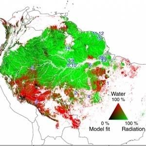 Estudo liderado por pesquisadores do Inpe mostra que o aumento da radiação solar é o fator determinante para o verdejamento da floresta Amazônia - Divulgação